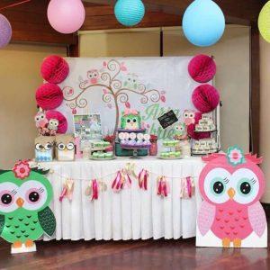 Owl Party Theme