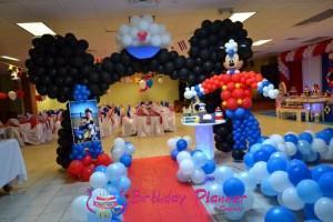 Disney Theme Party Decoration in Delhi, Gurgaon, Noida and Faridabad.