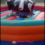 MECHANICAL BULL RIDE ON RENT IN DELHI NCR