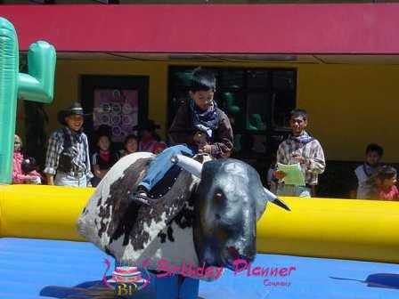 Bull Ride On Rent in Delhi