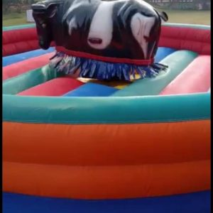 Bull Ride On Rent In Delhi Ncr