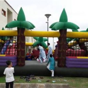 Jungle Bouncy On Rent In Delhi